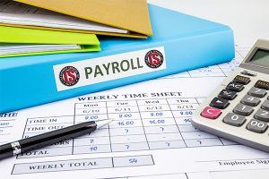 payroll specialist accountant